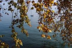 Bateau sur le Lac Léman - Genève