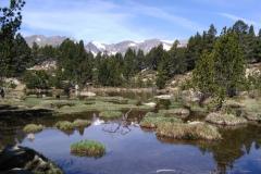 Lacs des Bouillouses
