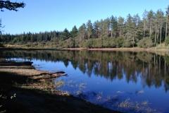 Lac de Bourdelet - Riols