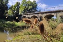 Rivière La Drée - Sully - 09/219