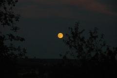 Lune - 08/2009